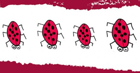 cartoon ladybirds